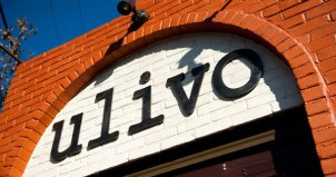 Ulivo in Philly